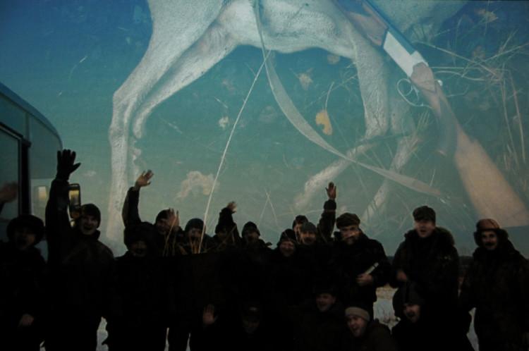 Праца зсерыі «Прывітанне, зброя!» Максіма Сарычава